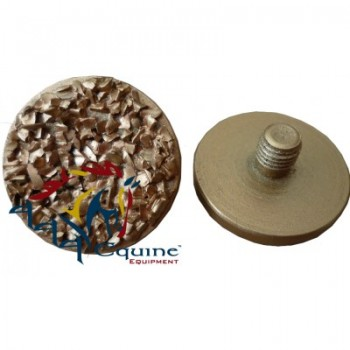 "1"" Carbide Grit Disc"